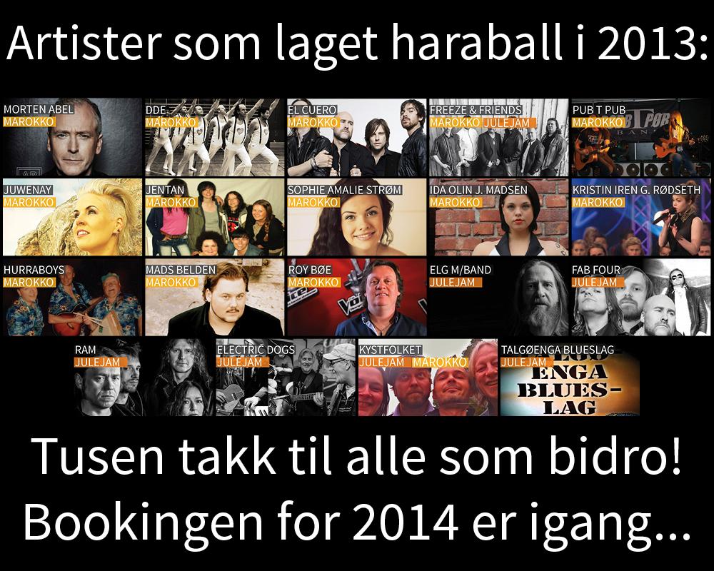 Alle artister 2013.jpg
