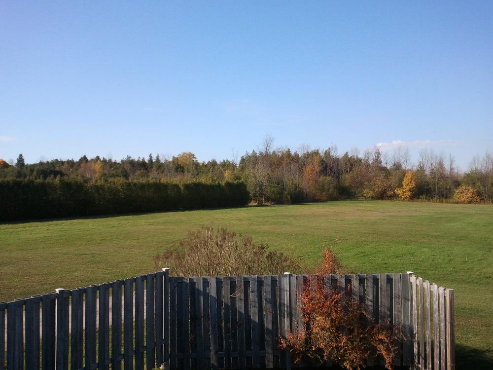 2012-10-25 14.51.42.jpg