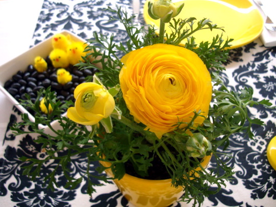 ranunculus-and-chicks-in-the-jellybeans
