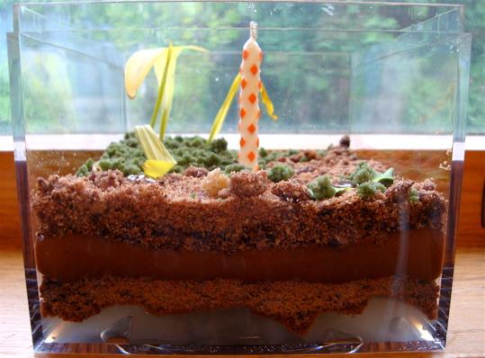 terrarium-cake