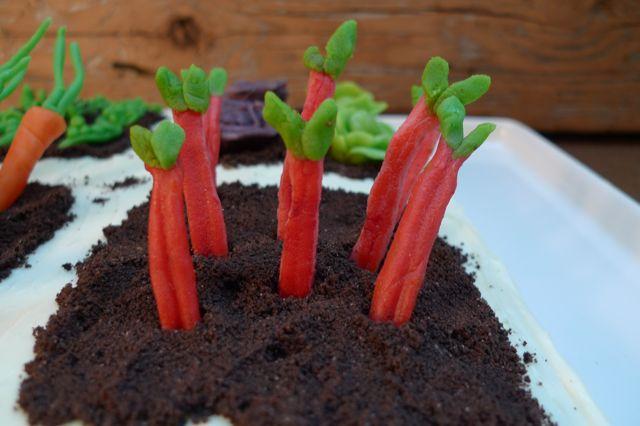 rhubarb.jpeg