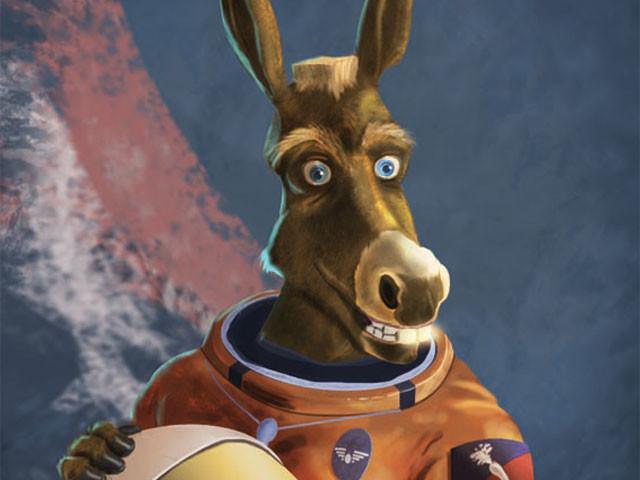 donkey_t-640x480.jpg