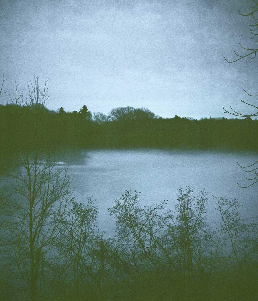 Pondside  (2013)