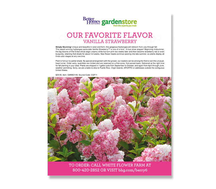 Better Homes and Gardens Ad