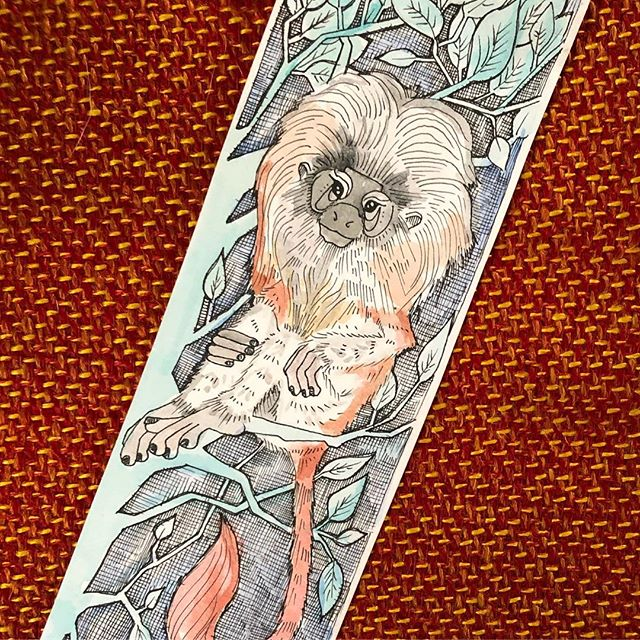 Found this bookmark peeking out of the pages of a forgotten read on our shelf today. It was the first thing I ever drew for @dondy0311 when we started dating. We had gone to the @oaklandzoo and this little fella and his magnificent mane caught our eye. #longlosttreasure #monkeylove . . . .  #dondyandthehen #bookmarkart #illustration #artlife #lineart #watercolor #penandink #goldenliontamarin #oaklandzoo #monkeyart