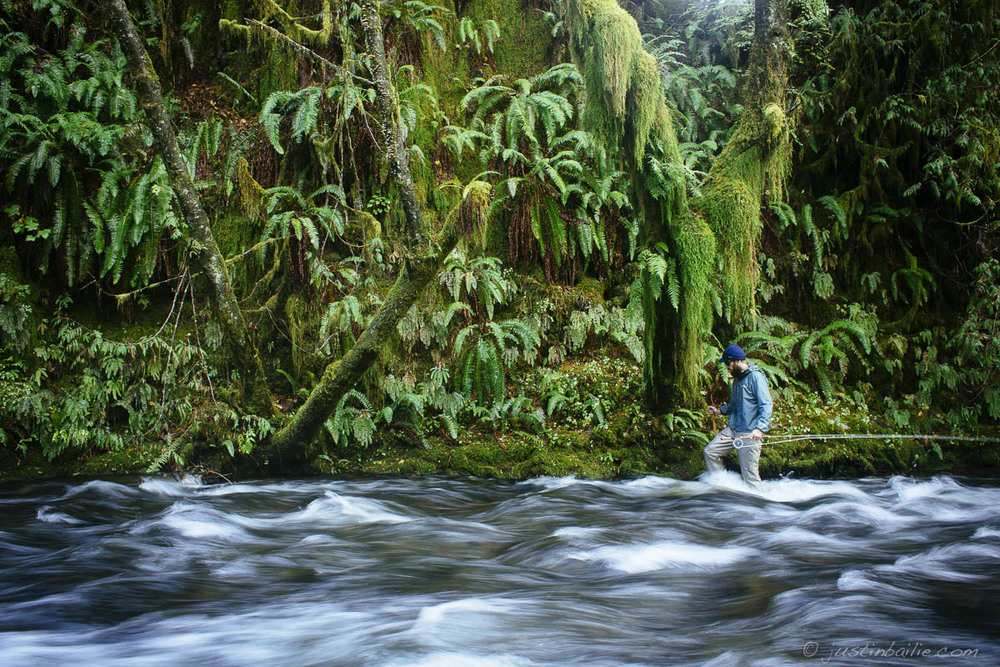 Favorite moments and images from 2014 pacific northwest for Nehalem river fishing