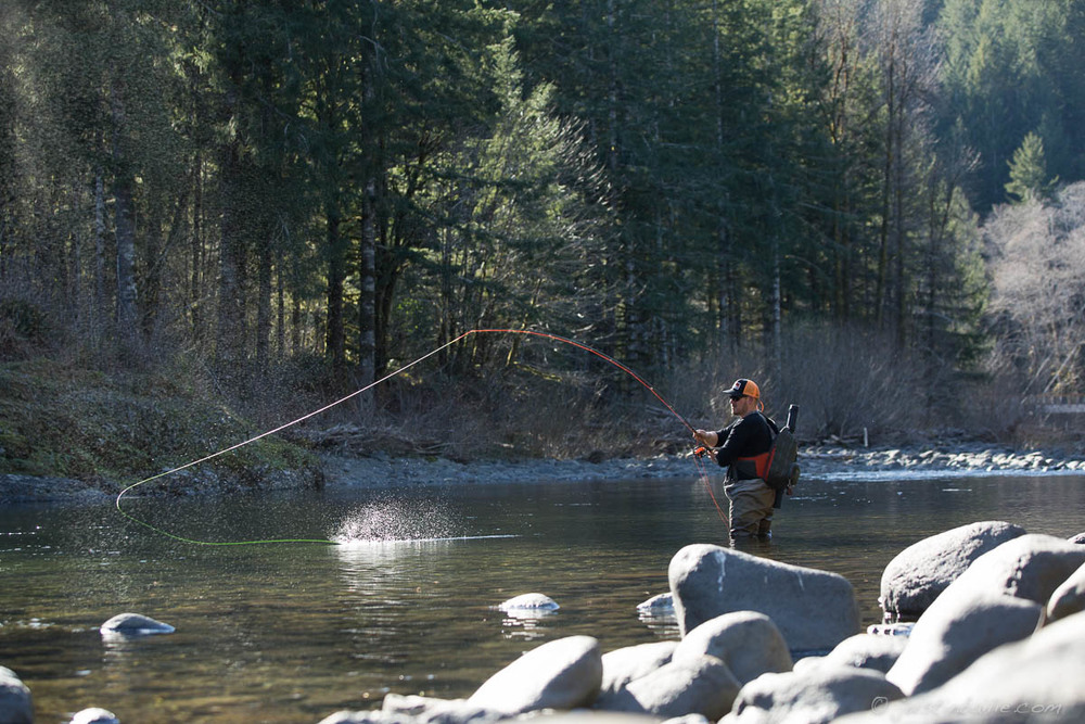 Fly fishing along the Wilson River, near Tillamook, Oregon.