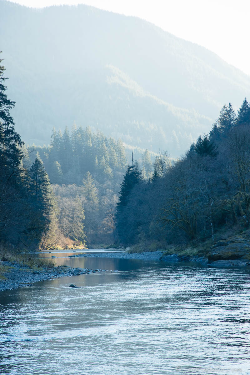 Scenic photo of  the Wilson River, near Tillamook, Oregon.