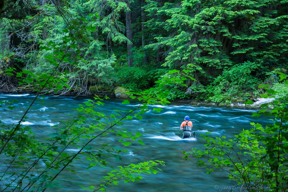 McKenzie River, Oregon.
