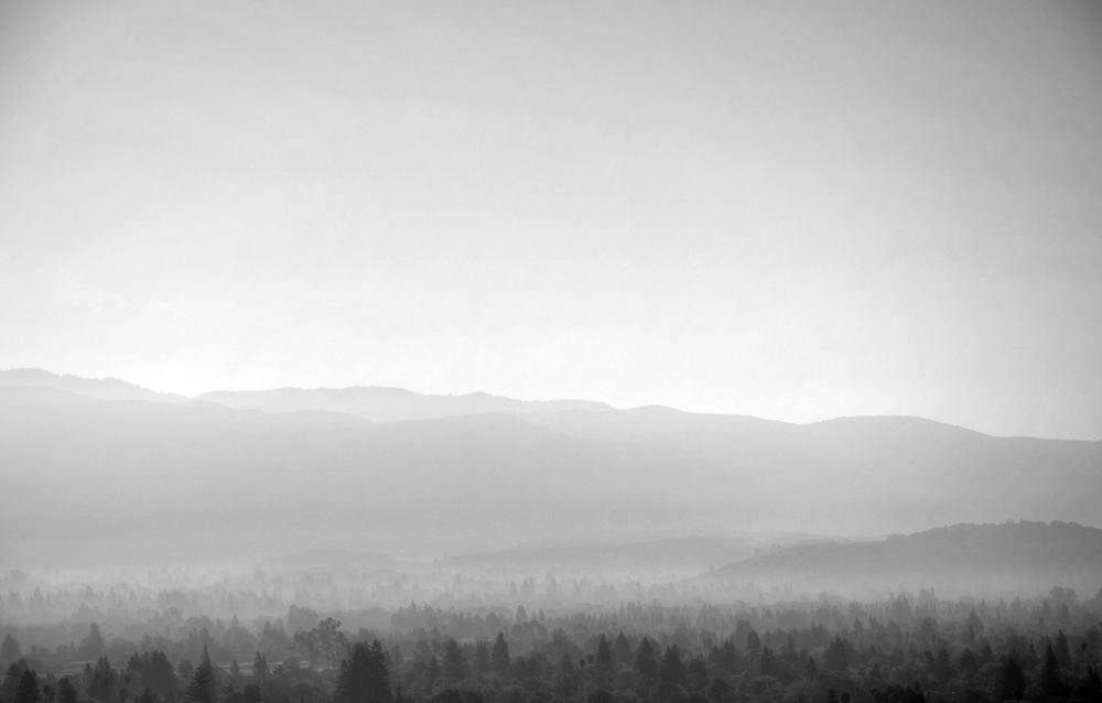 The Fog a.jpg