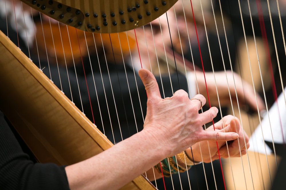 Planned giving - A planned gift to the Lake Forest Symphony instills a personal sense of satisfaction with the knowledge that you are helping to create a living legacy that will ensure the Symphony's future.