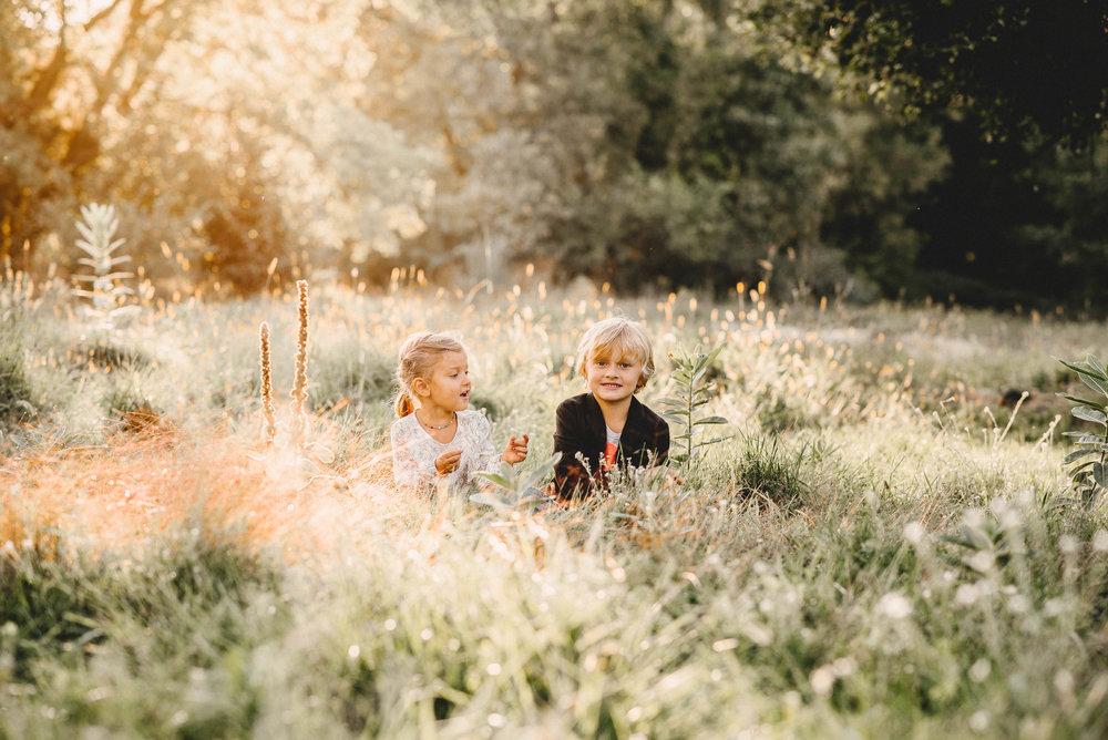 M. Family Shelby Twp. MI Photographer (22).jpg