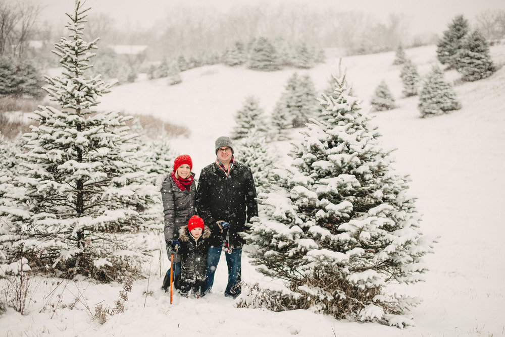 Christmas Tree Farm Family Photo Session Metamora Michigan Winter (9).JPG
