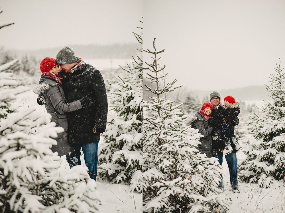 Christmas Tree Farm Family Photo Session Metamora Michigan Winter (30).jpg