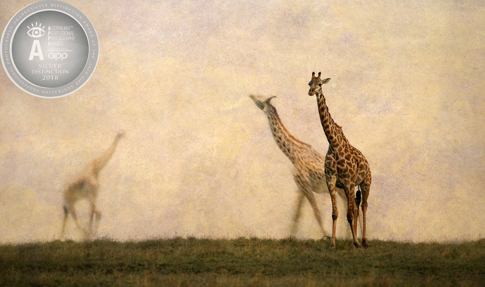 Silent Extinction.jpg