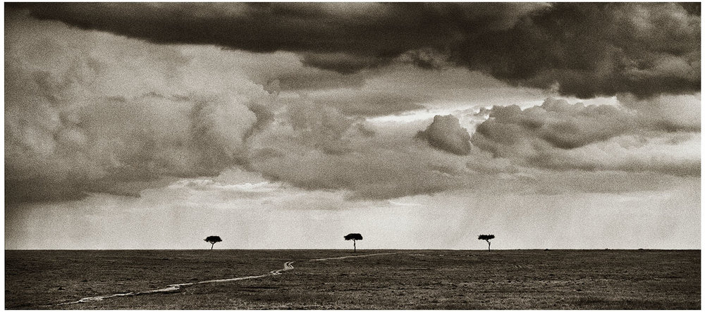 The three sentinels … Masai Mara National Reserve 2011