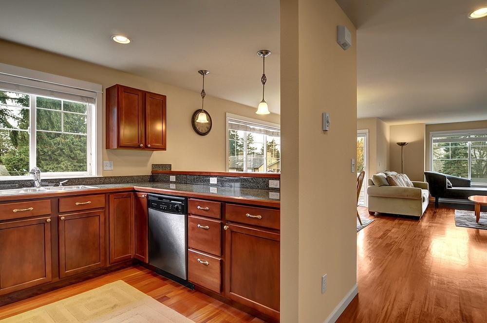 kitchen dishwasher.jpg