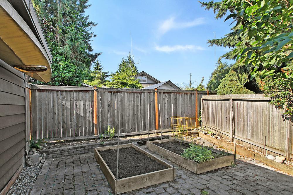 back garden beds.jpg
