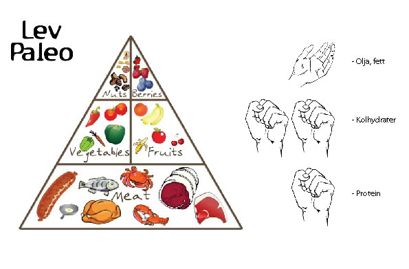 1 knytnäve av vårt val av protein, 2 knytnävar grönsaker, kolhydrater 1 handflata av vårt val av olja/fett, nötter.