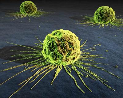 Bild från:http://genome.fieldofscience.com/