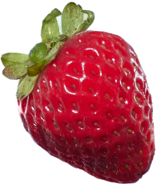 Strawberries_03.png