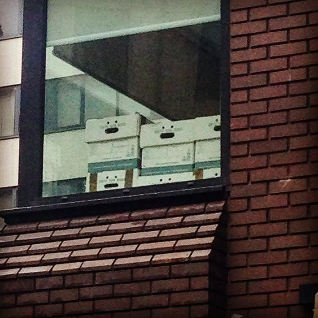 There's a growing sense of shock and panic in Leeds today 😉 #thethingsyousee #facesinthings #whathavetheyseen