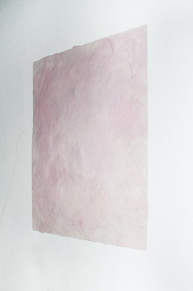Blushing Bust.  Tallow, blush, wax on the wall  60 x 40 2016  1 AP  Studio work Moscow, Russia  Images: Anya Mokhova Studio