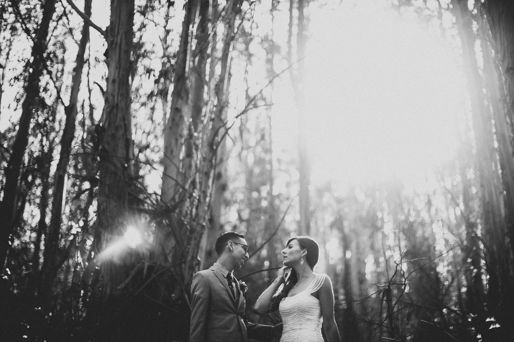 Nichole_Will_SanFranciso_Wedding_11.JPG