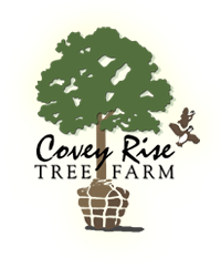 Covey Rise Tree Farm