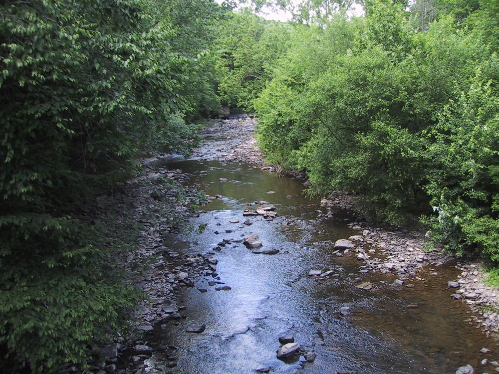 upstream from neifer.JPG