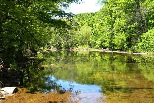 perkiomen-creek-g-halus-16.jpg