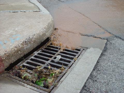 environmental-awareness-11292010.jpg