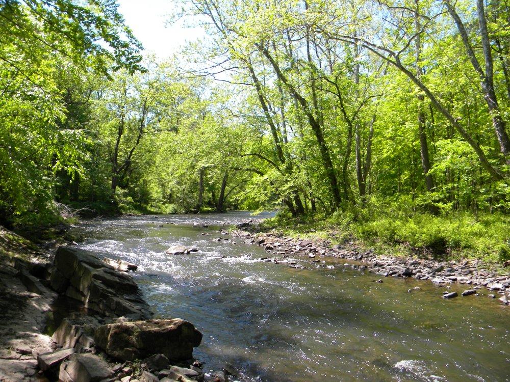 Perkiomen Creek47 (G.Halus).JPG