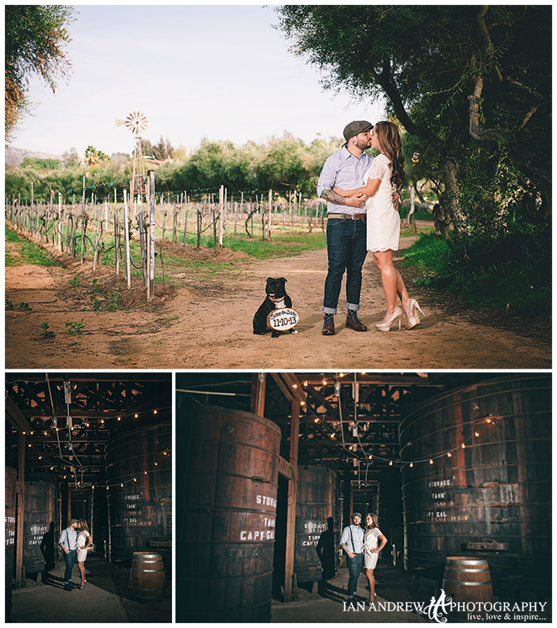 bernardo winery engagement
