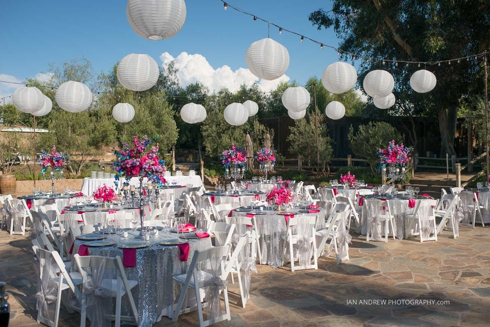 lake oak meadows weddings-77.jpg