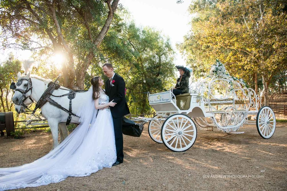 lake oak meadows weddings-78.jpg