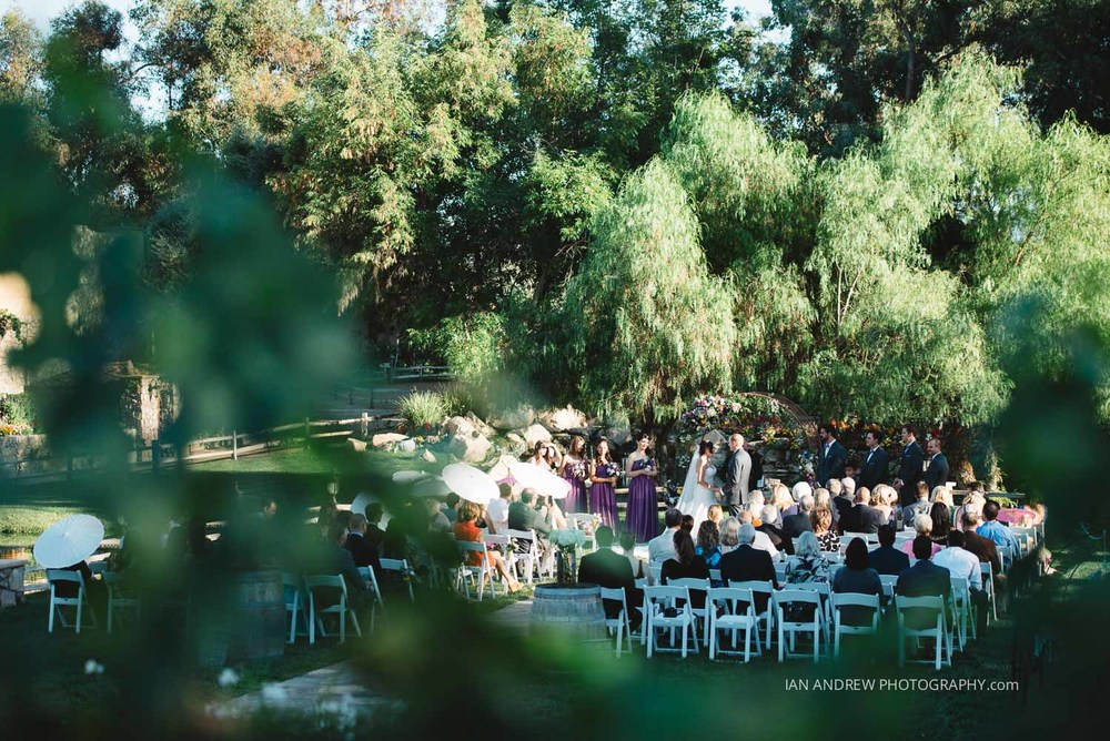 lake oak meadows weddings-93.jpg