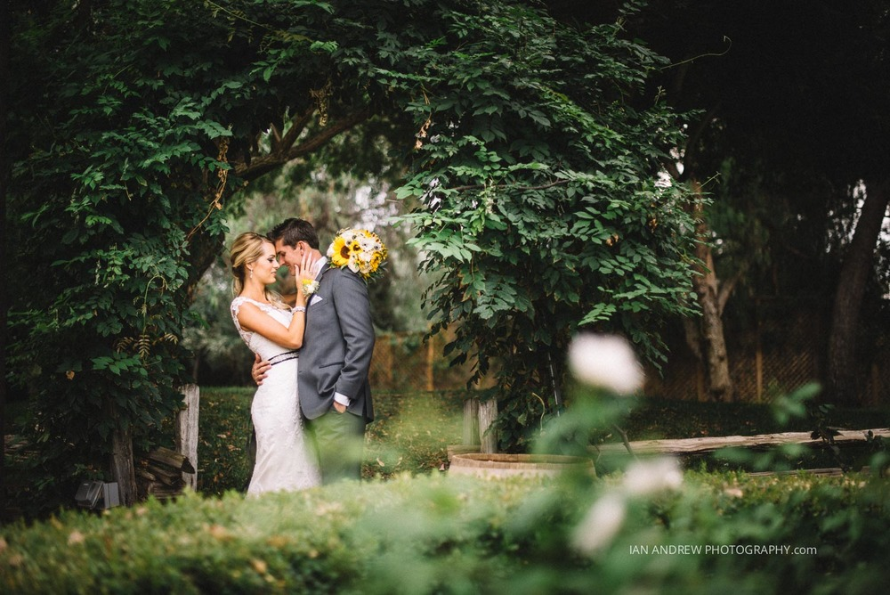 lake oak meadows weddings-105.jpg