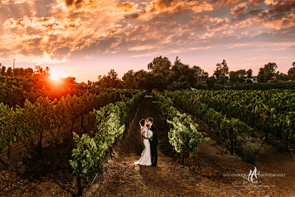 ian andrew photography_lorimar winery wedding photography-3.jpg