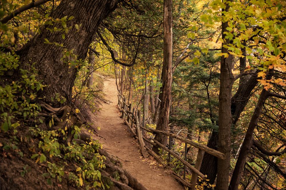 Dundas Peak - Hamilton Photography Locations-6.jpg