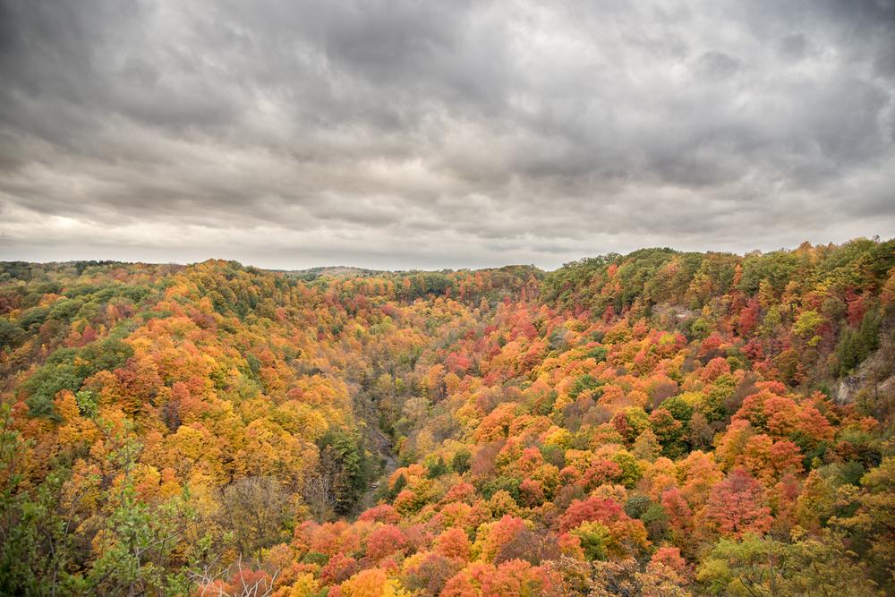 Dundas Peak - Hamilton Photography Locations-8.jpg