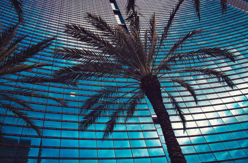Miami Architectural Photography - Marek Michalek 008.JPG