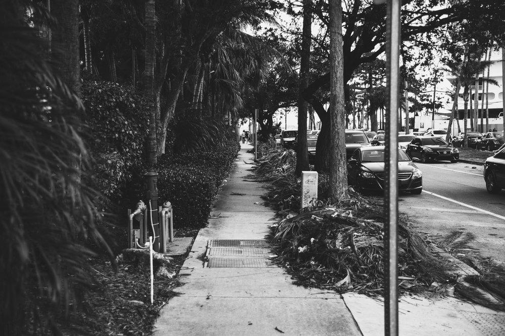 Miami Street Lifestyle Photography - Marek Michalek 001.JPG