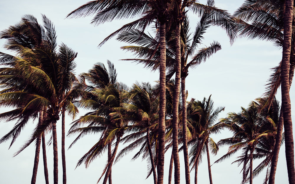 Miami Street Lifestyle Photography - Marek Michalek 006.JPG