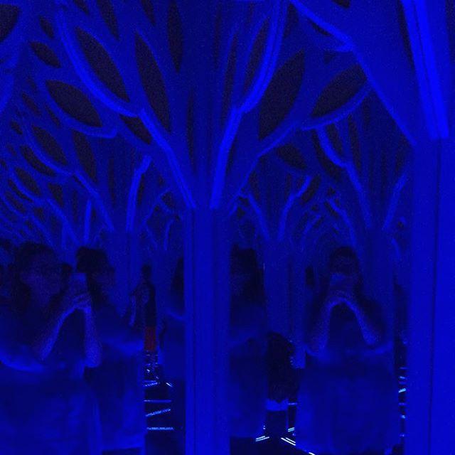 Maze of mirrors! #chicago #museumofscienceandindustry
