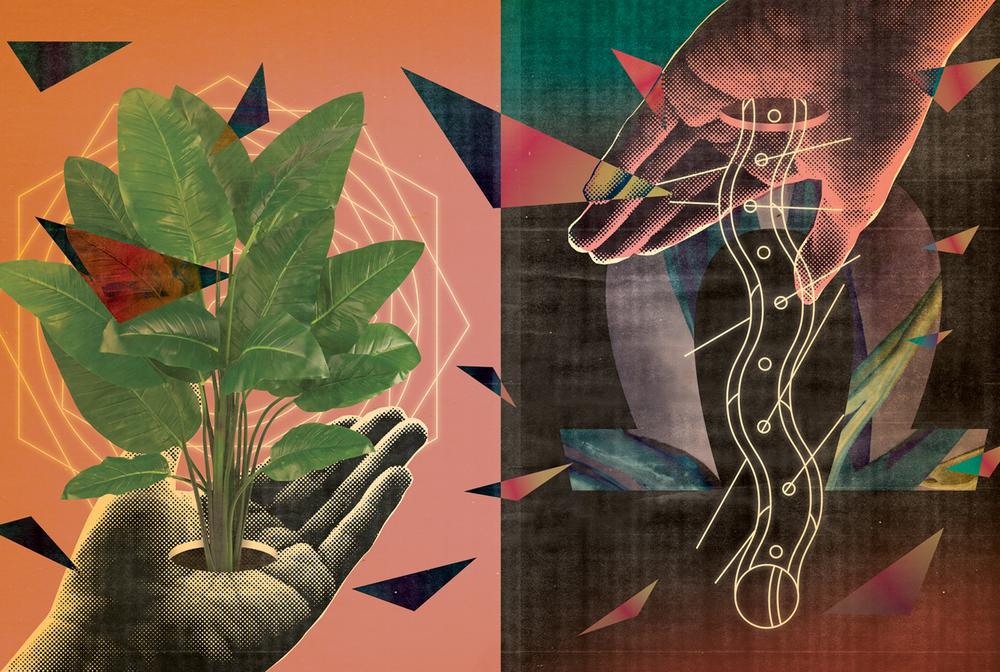 plant_hands_3.jpg