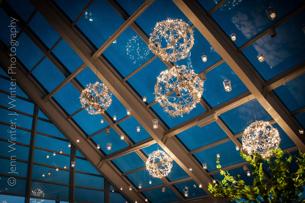 May Adler Wedding Lights.jpg