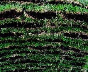 sod-layers-300x244.jpg