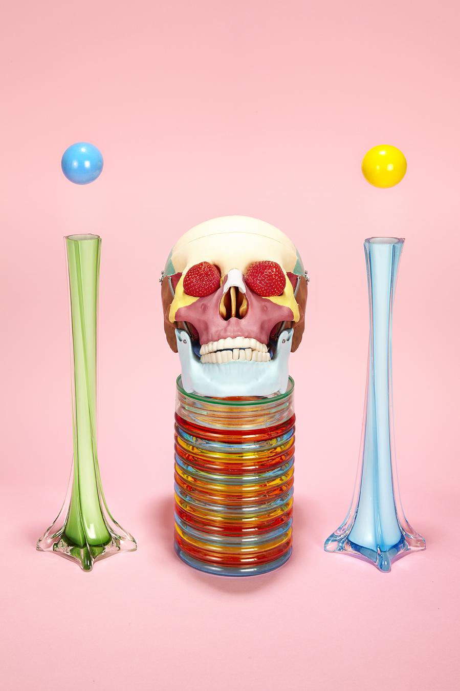 121218_JT_Skull.jpg