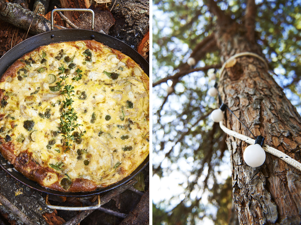 silver island photography photographer food photographer london britain uk recipe cookbook cook book ingredients travel greece sunshine bright vibrant delicious tasty method trees rustic daylight frittata courgette thyme pan wood tree lights tree